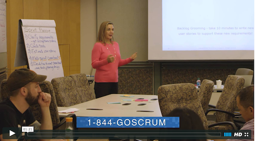 Go Scrum Video